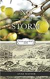 No Small Storm (Coast-to-Coast Brides Book 1)