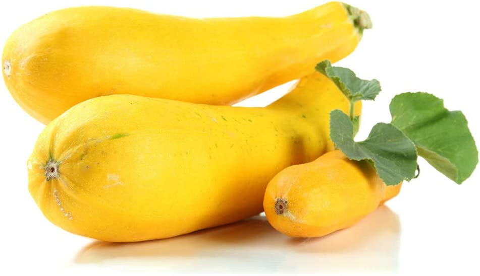 Bebliss Semillas de calabac/ín amarillo 25 bolsa