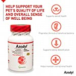 Vetoquinol Azodyl Kidney Health Supplement for Dogs & Cats, 90ct - Probiotic Pet Well-being - Help Support Kidney Function & Manage Renal Toxins - Renal Care Supplement - Easy-to-Swallow Small Caps 10