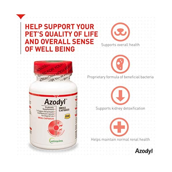 Vetoquinol Azodyl Kidney Health Supplement for Dogs & Cats, 90ct - Probiotic Pet Well-being - Help Support Kidney Function & Manage Renal Toxins - Renal Care Supplement - Easy-to-Swallow Small Caps 3