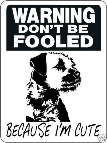 Dozili Metal Sign Border Terrier Security Aluminum Sign Warning Dog
