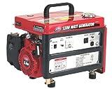 All Power America APG3301C, 1000 Running Watts/1200 Starting Watts, Gas Powered Portable Generator