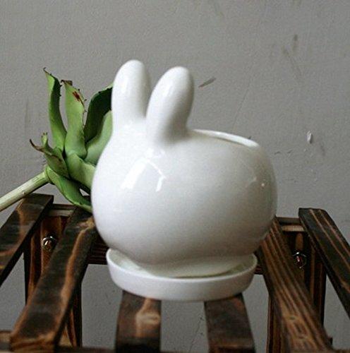 Blue Stones Lovely Rabbit Tiger White Ceramic Planter Mini Animal Flower Pot for Cactus Succulents Plants Home Garden Decoration by Blue Stones