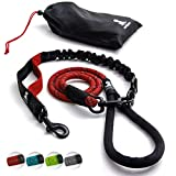 Heavy Duty Rope Leash for Large and Medium Dogs with Anti-Pull Bungee for Shock Absorption - No Slip Reflective Leash for Outside – Suitable for Dog Training and Walking (Red)