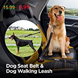 Cheap Peteast Multifunction Dog Leash/Seat Belt – 2 Padded Traffic Double Handle – Adjustable Length for Small/Medium/Large Dogs