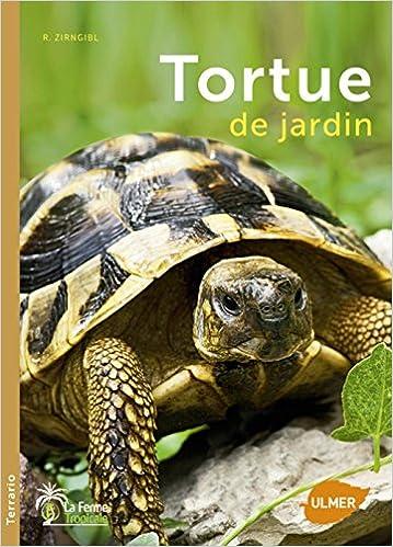 quel livre choisir pour ma tortue d hermann reptile passion l zard tortue et serpent. Black Bedroom Furniture Sets. Home Design Ideas