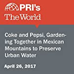 Coke and Pepsi, Gardening Together in Mexican Mountains to Preserve Urban Water | Jason Margolis
