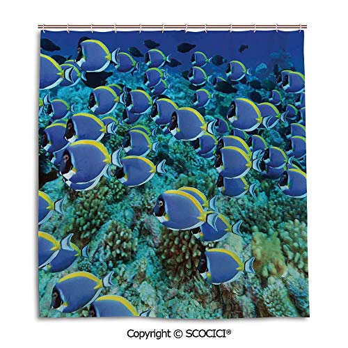 - SCOCICI Bath Curtain Suit Bathroom Waterproof Curtain Shower Curtain,66X72in,Ocean,School of Powder Blue Tang Fishes in The Coral Reef Maldives Deep Seas,Aqua Blue and Yellow,Used for Bathing Privacy