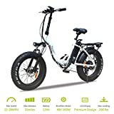 VTUVIA Folding Electric Bicycle with 500W Motor and 48V 12AH Removable Lithium-Ion Battery 20 Inch Fat Tire Bike City Mountain E-Bike for Adults(White)