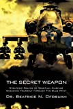 The Secret Weapon, Beatrice N. Ofosuah, 1606477862