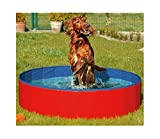 N&M Products Foldable Dog Pool - Folding Dog/Cat Bath Tub - Collapsible Pet Spa (Large (50