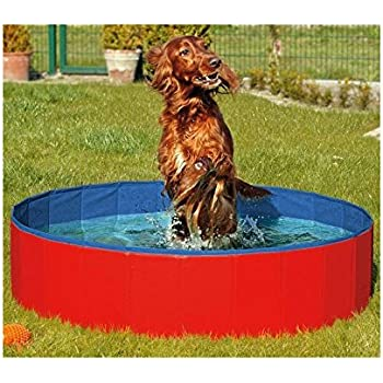 Amazon Com N Amp M Products Foldable Dog Pool Folding Dog