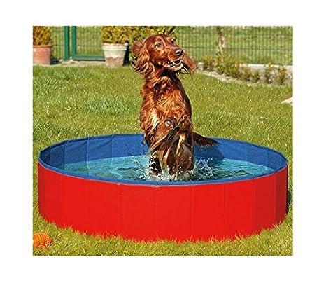 Amazoncom Furryfriends Foldable Dog Pool Folding Dogcat Bath