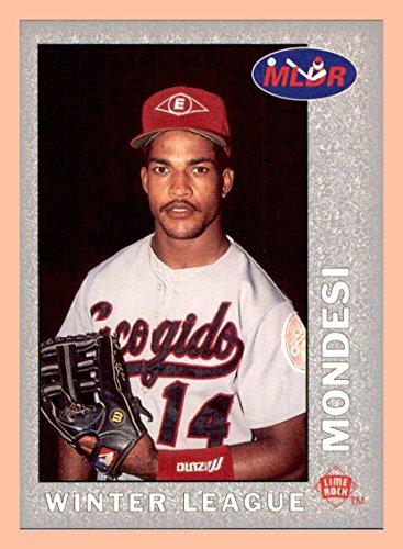 Los Angeles Dodgers Rock - Raul Mondesi LOS ANGELES DODGERS 1993 Lime Rock Dominican Baseball #27 Escogido Leones