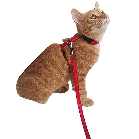 Shangwelluk Arnés de Nailon para Gatos con Correa de Collares y Cuerda de Seguridad Ajustable para