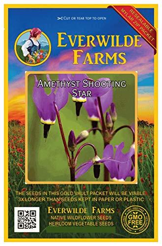 (Everwilde Farms - 200 Amethyst Shooting Star Native Wildflower Seeds - Gold Vault Jumbo Seed Packet)