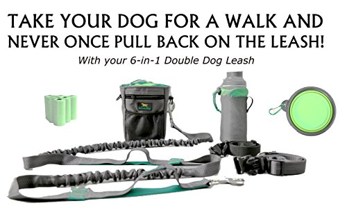 ALL-IN-ONE HANDS-FREE DOUBLE DOG BELT-AND-BUNGEE BUDDY LEASH SYSTEM AND WALKING BELT FOR OWNERS OF RUNNING DOGS, PEOPLE WITH STROLLERS, IN A WHEELCHAIR OR HIKING, WITH SHOCK ABSORPTION