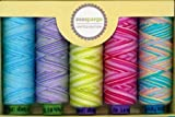Sue Spargo LIMITED EDITION 5-Spool Thread Set - Spring Collection 2016