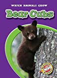 Bear Cubs, Anne Wendorff, 1600142389