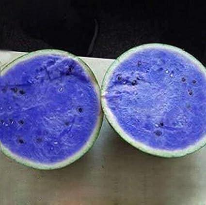 amazon com a package 50 pieces seeds blue flesh watermelon seeds