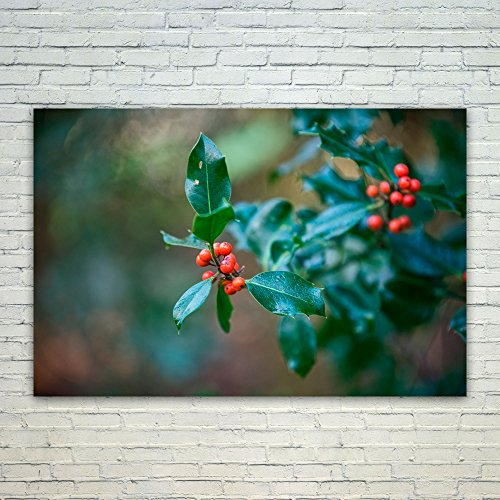 Westlake Art Berry Holly - 12x18 Poster Print Wall Art - Modern Picture Photography Home Decor Office Birthday Gift - Unframed 12x18 Inch (0BD0-10AA7)