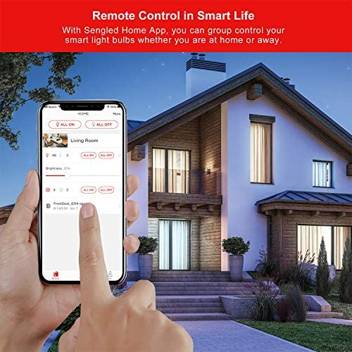 Sengled Smart Light Bulbs, WiFi Light Bulbs No Hub Required, Smart Bulbs That Work with Alexa, Google Home, Smart LED Light A19 Daylight (5000K), 800LM 60W Equivalent, 2 Pack