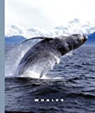 Whales, Sophie Lockwood, 1592969305