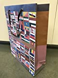 eVincE 5 LARGE Gift Paper bags to wrap N gift with ALL COUNTRY FLAGS with their continents, CORPORATE gifts, HOLIDAY GIFTS, FRIENDSHIP DAY, APPRAISALS BIRTHDAY GIFTS, THEME return favors. 28 X 33 cms