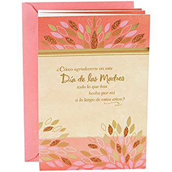 Amazon hallmark vida spanish mothers day greeting card how hallmark vida spanish mothers day greeting card how can i thank you m4hsunfo