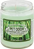 Specialty Pet Products Pet Odor Exterminator Candle, Bamboo Breeze,13 oz