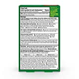 Amazon Basic Care Coated Nicotine Polacrilex Gum, 4