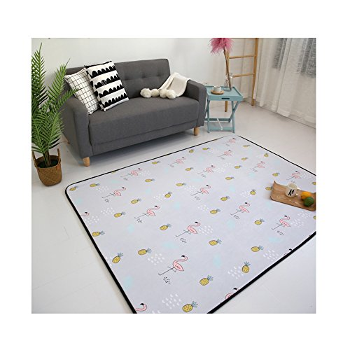 Simple Korean Design Kids Rug - Sofa Coffee Table Polyester Carpet Indoor Floor Decor 20 x 59 Inch