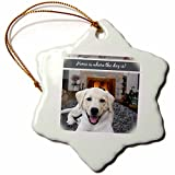 3dRose orn_123125_1 Home is Where The Dog is Quote Cute Golden Labrador Puppy in Front of Fire Place Snowflake Ornament Porcelain, 3-Inch