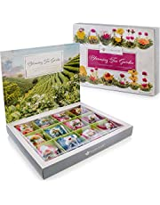 Coffret de fleurs de thé Teabloom - Collection de fleurs de thé de qualité suprême cueillis dans les plus beaux jardins du monde - 12 variétés de fleurs de thé
