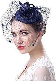 Fascinator Hats for Women Ladies Flower Mesh Feather Pillbox Hat with Veil Headband and a Clip Tea Party Headw