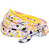Blueberry Pet 5 Patterns Durable Made Well Blooming Floral Print Dog Leash in Creamy White, 5 ft x 5/8', Small, Leashes for Dogs