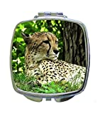 Cheetah Wildlife Animal in the Jungle - Compact Mirror in Silvertone - Square Shaped - Pocket Sized