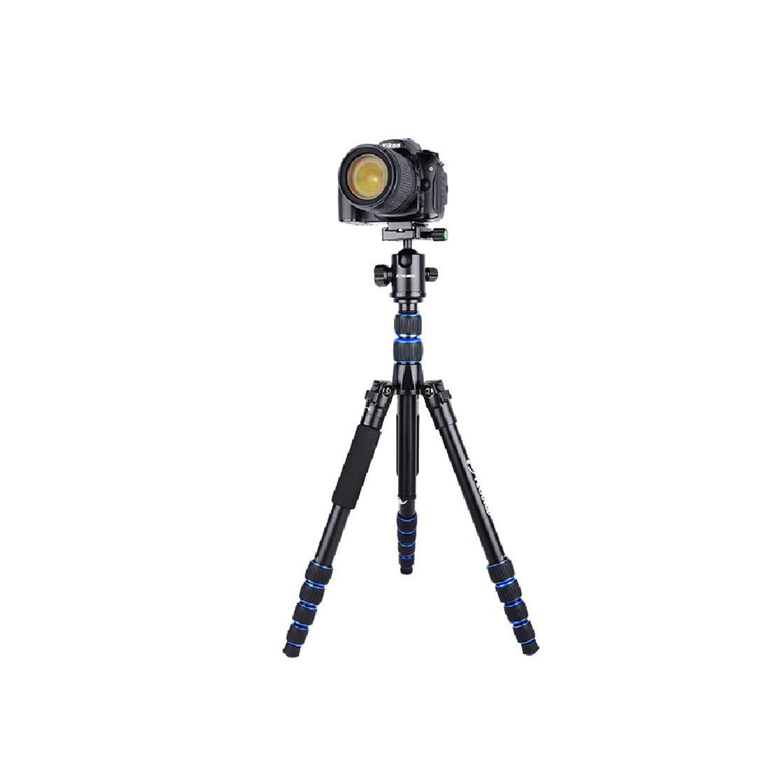 いいスタイル Chen Qin : (Color シングル ブラック) - アンチ三脚プロフェッショナル写真マイクロ - シングルカメラトラベルサポート。 (Color : ブラック) B07KWKJD1D, あっちゃんのかばん屋さん:440345fc --- sinefi.org.br