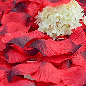obmwang 3000Pcs Dark Silk Rose Petals Wedding Flower Decoration Artificial Red Rose Flower Petals for Wedding Party Favors Decoration and Vase Home Decor Wedding Bridal Decoration(3000pcs Red) 4
