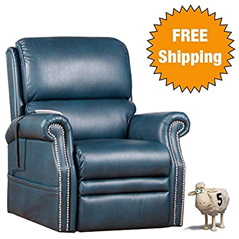 Serta Perfect Lift Chair: This Plush Comfort Recliner includes Gel-Infused Foam and Ergonomic Hand Held Control With 2 Large LED Buttons and USB Port (Kelp - Free Lift Chairs