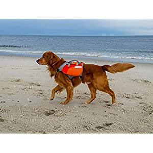 Multi-Purpose Dog Backpack Life Jacket 29