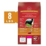 Purina ONE Natural Dry Dog Food, SmartBlend Chicken