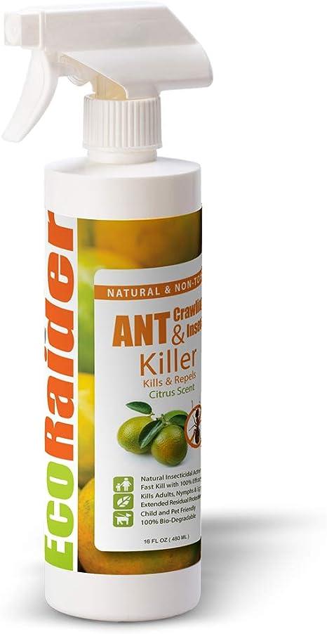 EcoRaider Spray de Hormiga Natural (480 ml), erradicación instantánea Incluye Hormigas de Fuego + prevención Duradera, no tóxico + Seguro para niños y ...