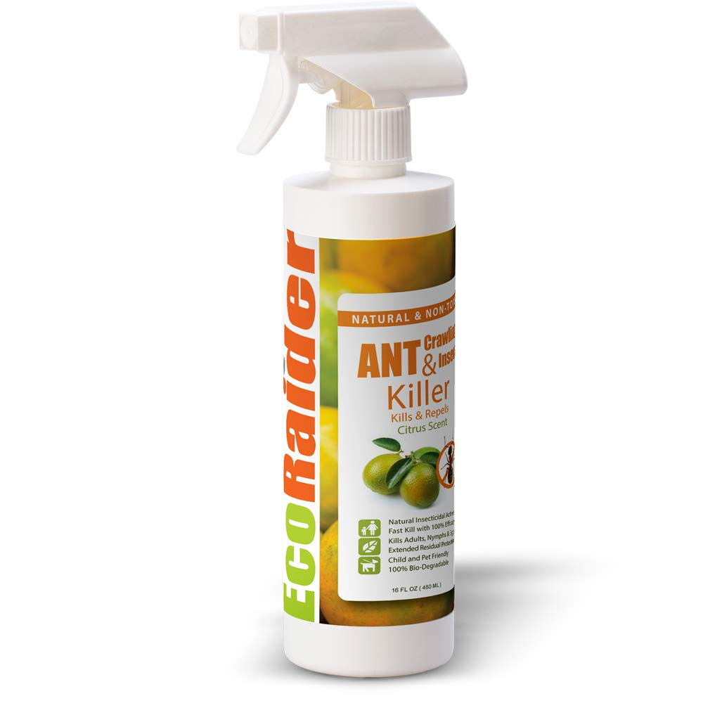 EcoRaider Ant Killer (16oz), Instant Kill + 4-Weeks Prevention, also Kills Fire Ants, Non-Toxic + Child and Pet Friendly