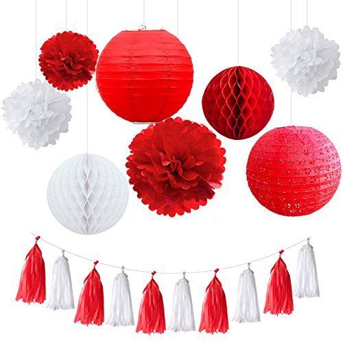 Fascola 18 Pcs White Baby Hanging Paper Lantern Paper Honeycomb Ball Pom Pom Flower Ball Tassel Garland for Wedding Birthday Kids Party Decor Set (White and Red)
