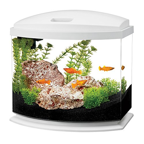 Aqueon LED MiniBow Aquarium Starter Kits with LED Lighting, 5 Gallon, White