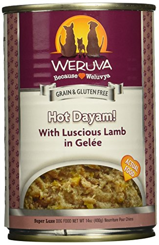 Weruva Classic Dog Food, Hot Dayam with Lamb in Gelée, 14...