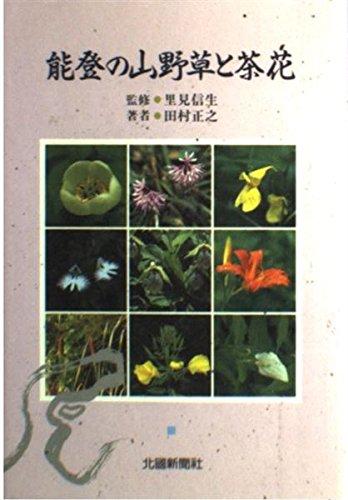 能登の山野草と茶花