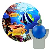 Projectables 11296 Tropical Fish LED Plug-In Night Light, Blue and...