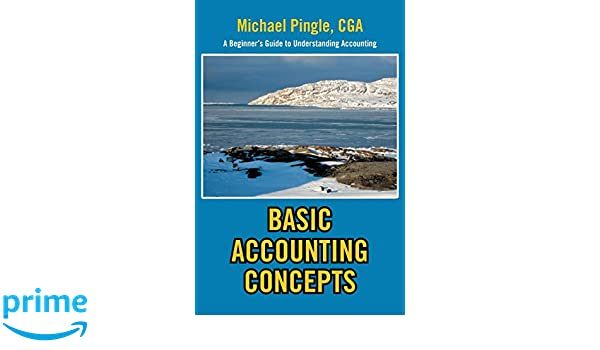BASIC ACCOUNTING CONCEPTS: A Beginners Guide to Understanding Accounting